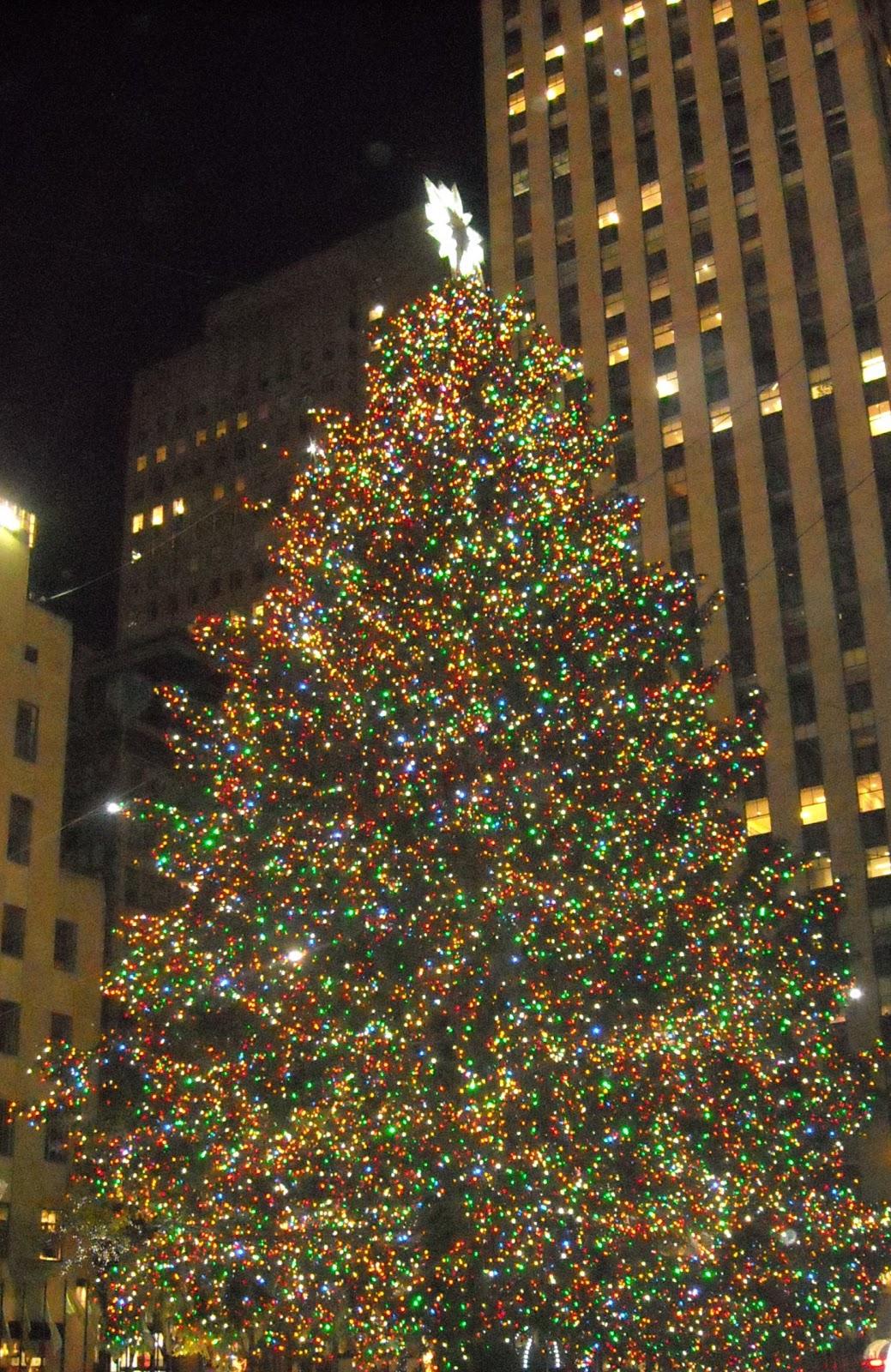 http://3.bp.blogspot.com/_gzrW0ibNjCs/TQFAXLd4vJI/AAAAAAAAACc/OLCNqBmcaBI/s1600/NYC+Tree+1.jpg