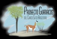 Proyecto Guanacos del Chaco Seco Argentino