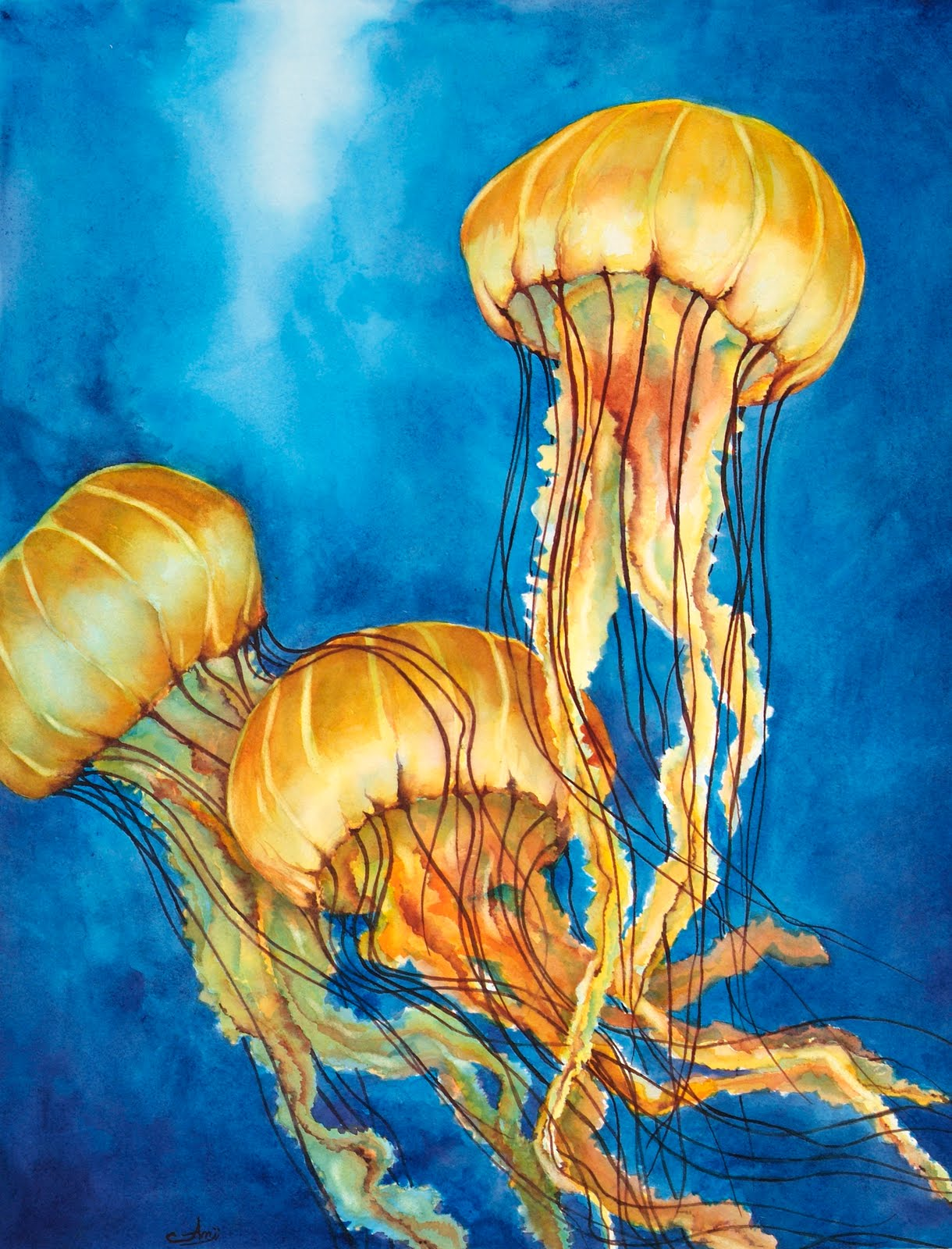 Watercolor artist morning dance for Jelly fish painting