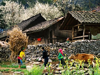 Ha Giang Travel Vietnam