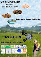 affiche du lancement du salon eco bio à Yssingeaux