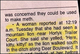funny stupid news really dumb people woman who called out here kitty to mountain lion another idiot born every minute