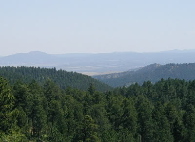 Black Hills National Forest overlook view