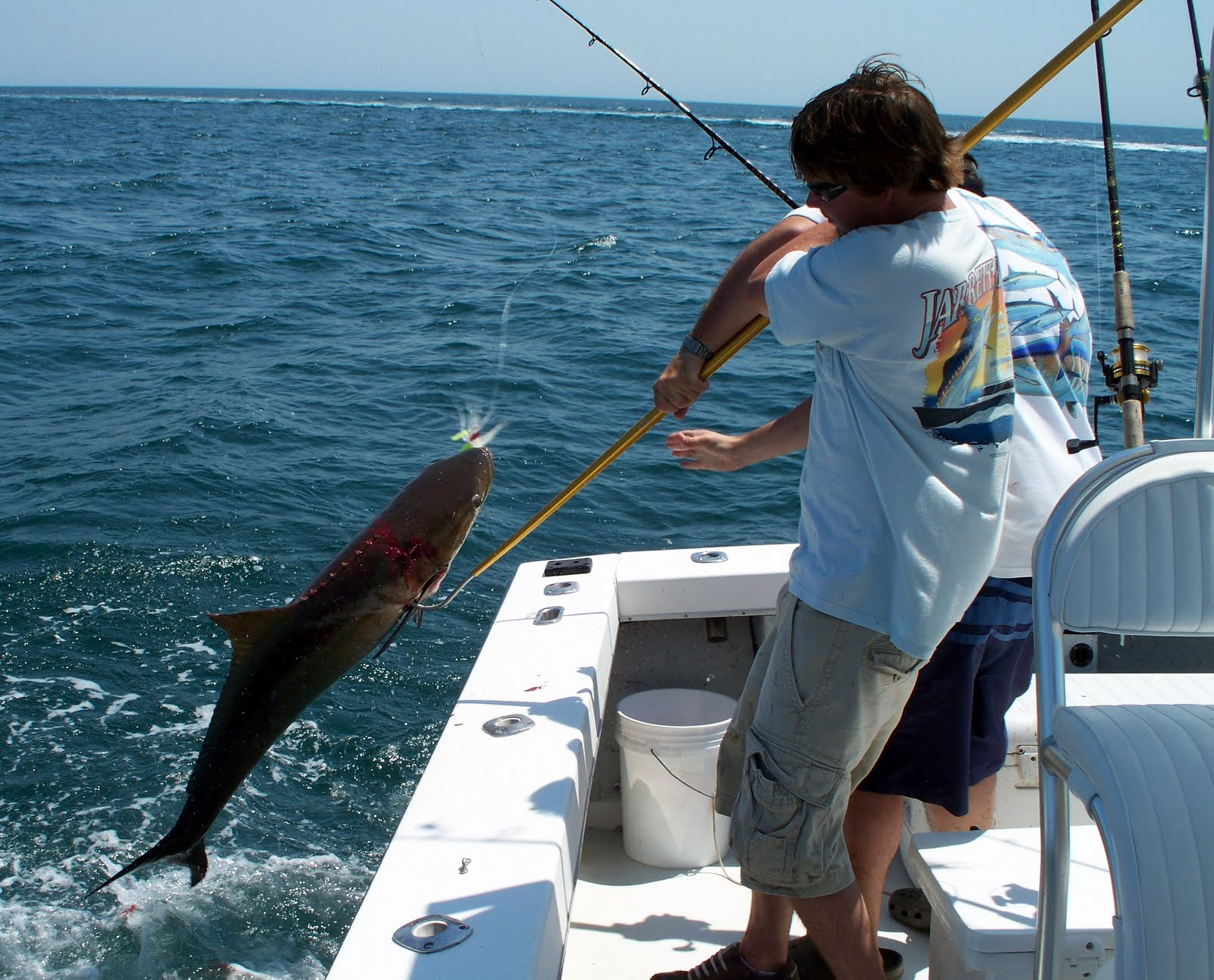 Top water charters fishing reports and news beaufort for Seven b s fishing report