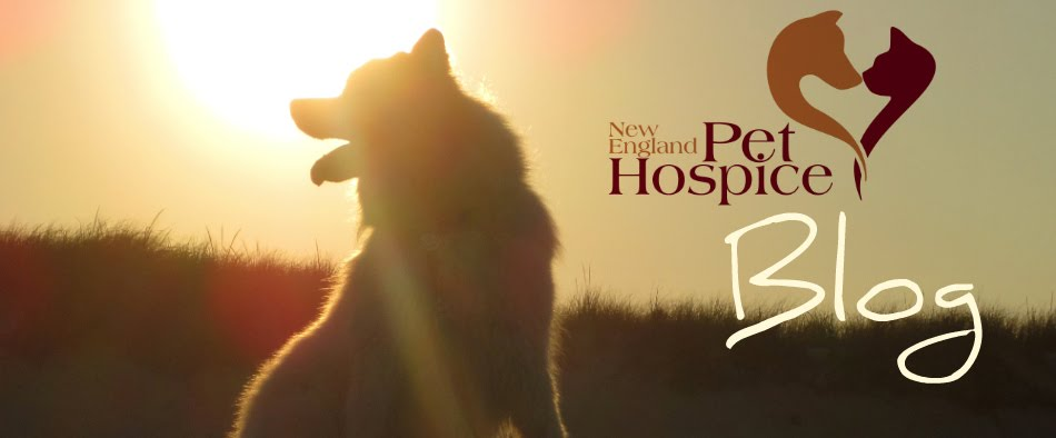 New England Pet Hospice