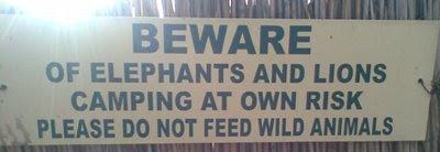África beware