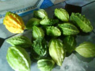 Fruit Fare Buah Pare