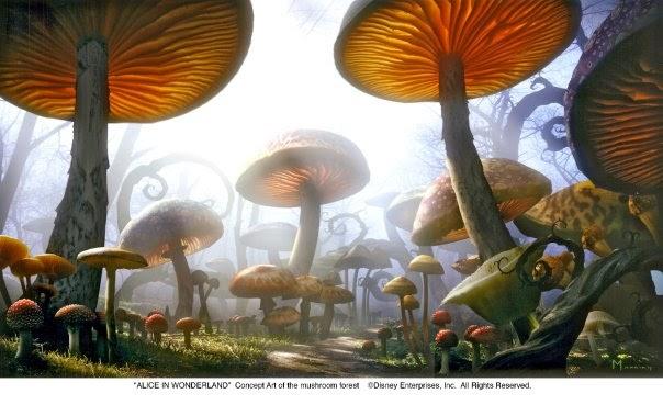 Alicia en el pais de las maravillas el jardin de hongos for Hongos de jardin
