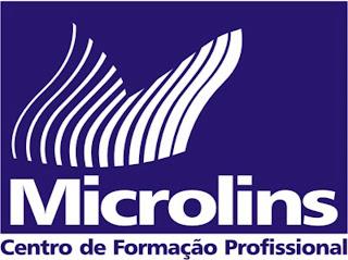 Microlins lança campanha para 2011