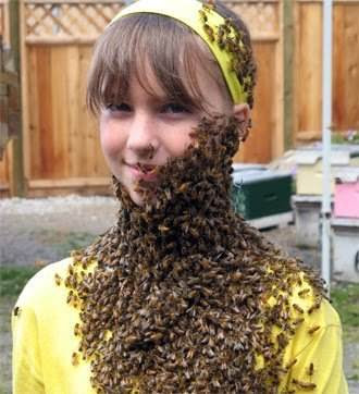 bee costume