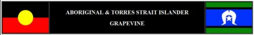 ATSI GRAPEVINE