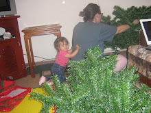 Putting the tree together