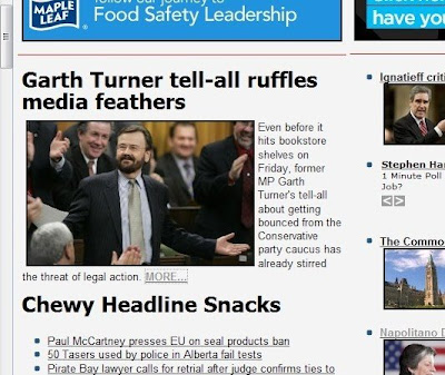 Garth Turner tell-all ruffles media feathers