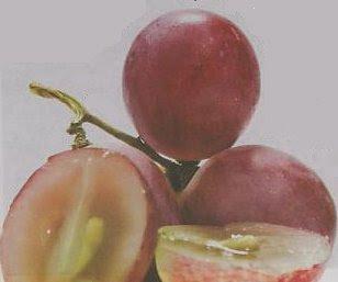 http://3.bp.blogspot.com/_hAW7Yaht06g/TS4EUlogc0I/AAAAAAAAAN8/o9hv8czVlgM/s1600/Biji+anggur.JPG