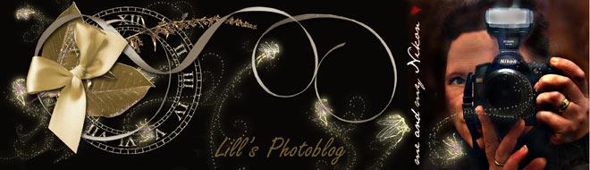 Lill's photoblog