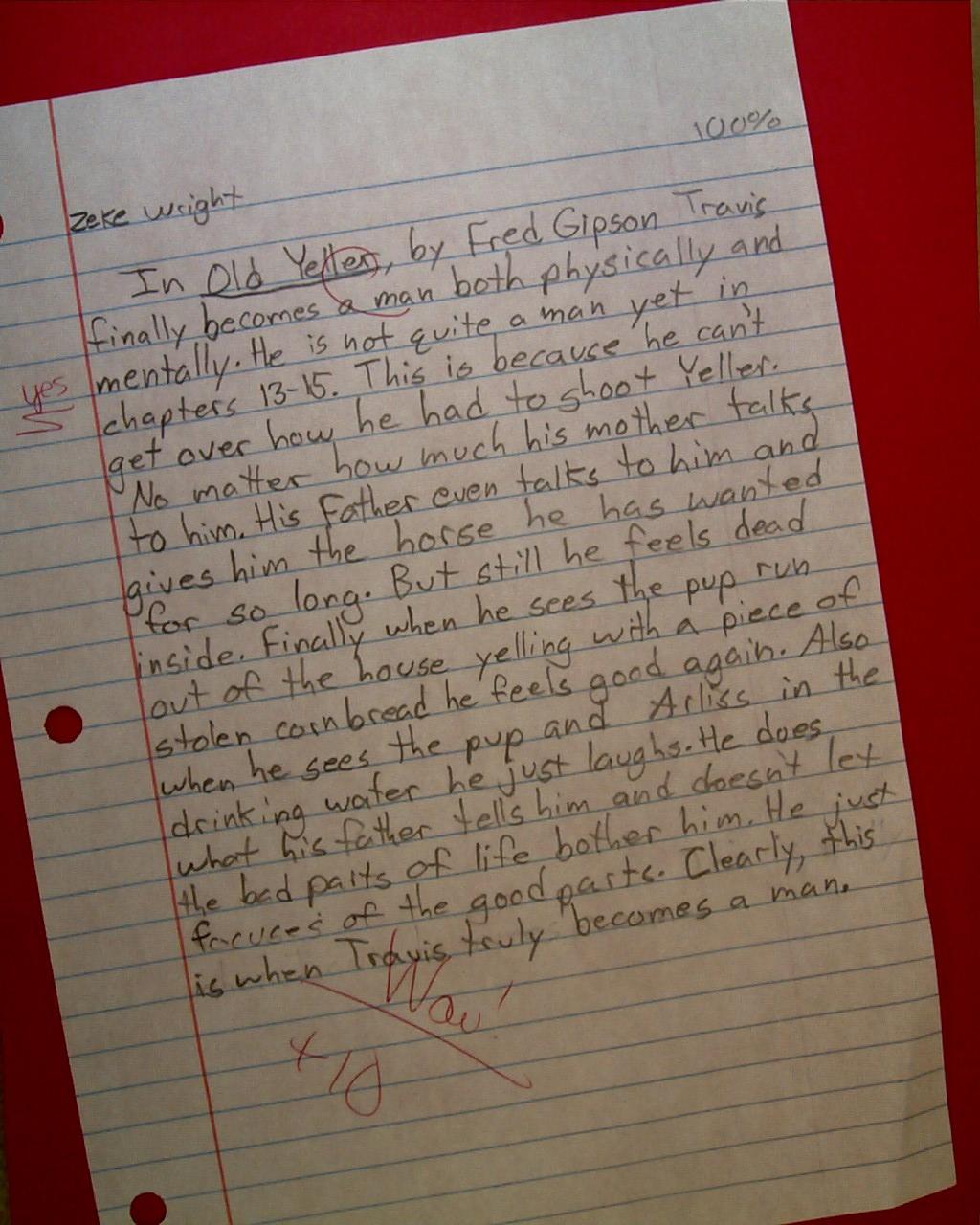 Persuasive Essay Ideas For High School  Essay Thesis also Health Promotion Essays Old Yeller Essay English Literature Essay