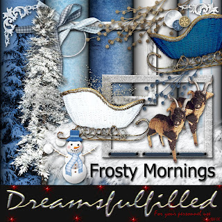 http://feedproxy.google.com/~r/Dreamsfulfilled/~3/WtwXzrQr5x0/frosty-mornings-element-2.html
