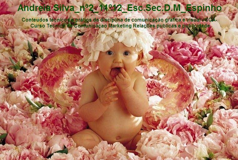 Andreia Silva_nº2_11º12_Esc.Sec.D.M_Espinho
