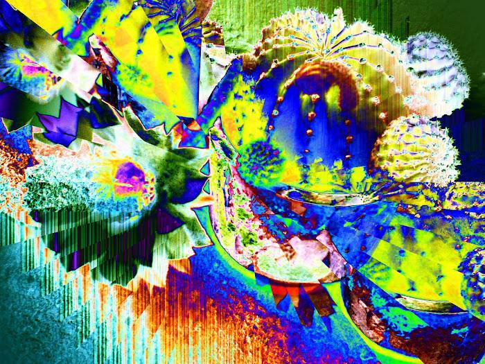 ColorAlgorithm 1