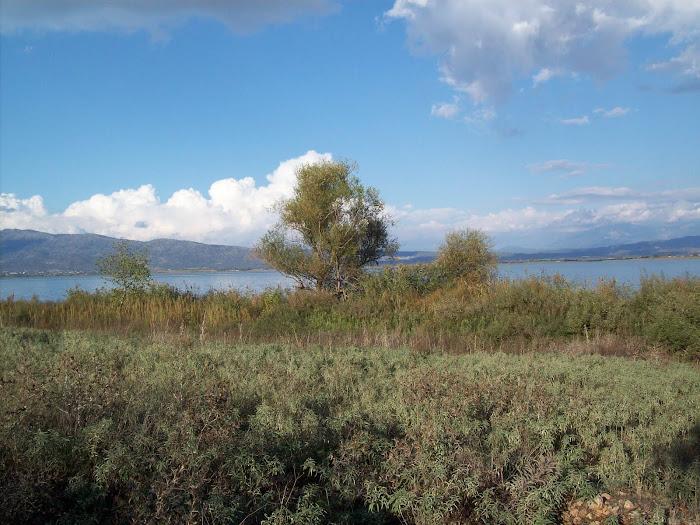 Λιμνη Οζερος [ Ακαρνανια ]
