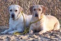Emmi und Gina (November 2006)