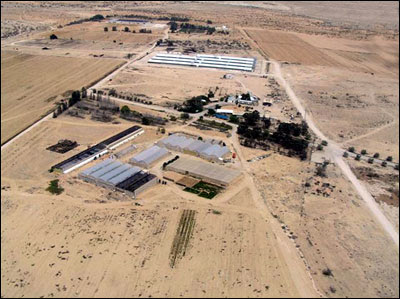 Greenhouses in Negev