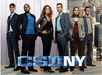 CSI New York Season 4