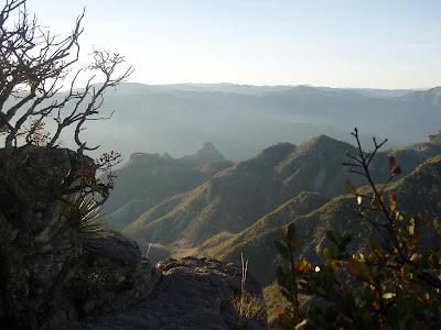 Copper Canyon morning