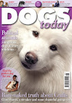 Stiil available as a back issue from 01276 858880 or enquiries@dogstodaymagazine.co.uk