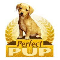 Perfect Pup - how to find a healthy dog