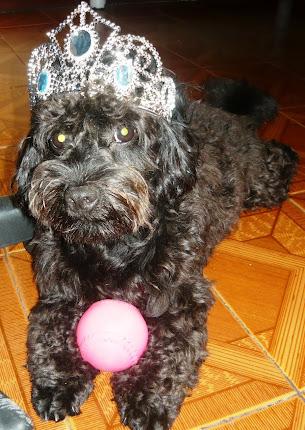 Meu príncipe!