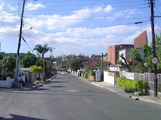 Rua Nelson Duarte Brochado