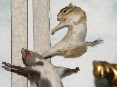 Kong Fu Rat
