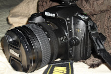 My Favorite Digital SLR