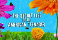 Watch The Secret Life Of The American Teenager Online Free Stream