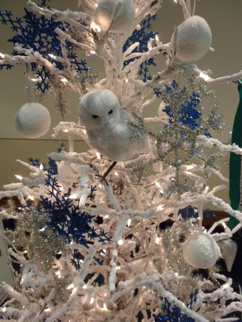 [Christmas2009+019.jpg]