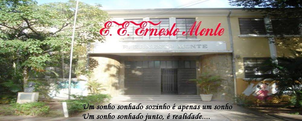 E.E. Ernesto Monte