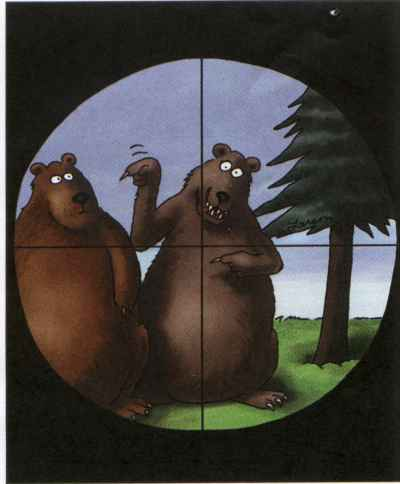 Image result for far side bear cartoon