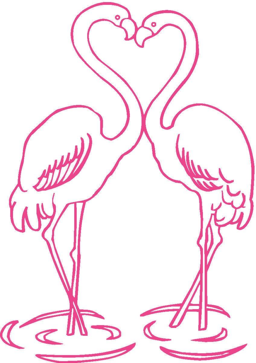 [pink+flamingos]