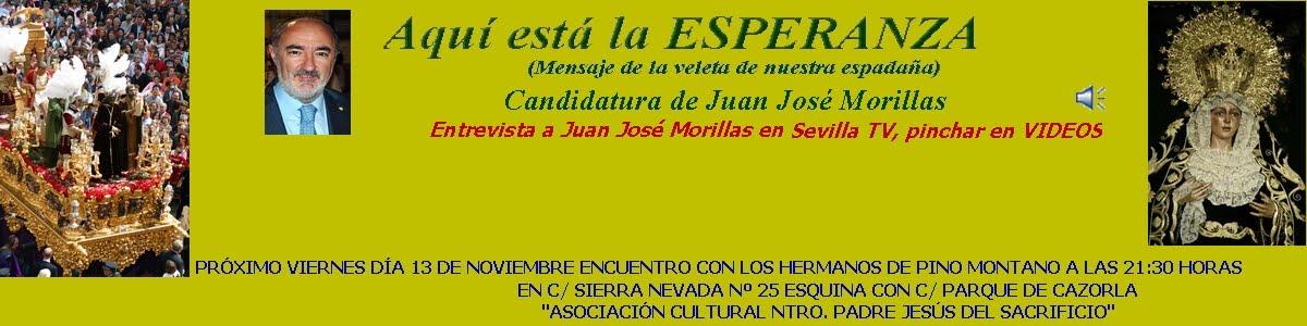 semana santa sevilla 2009-hermandad del sol. Recta final Elecciones 2009