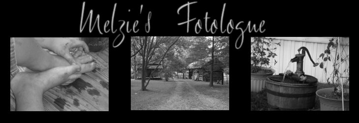 Melzie's Fotologue