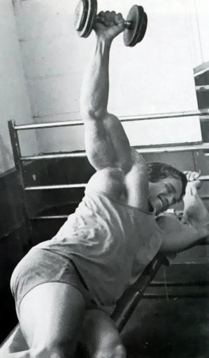 arnold schwarzenegger workout pictures. arnold schwarzenegger workout
