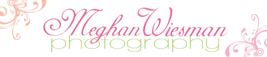 Meghan Wiesman Photography. Southern California Maternity, Newborn, Family  photographer