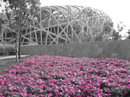 Olympic Grounds- Beijing