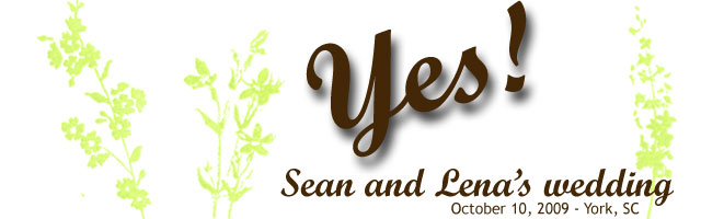 Sean and Lena - Getting Married!