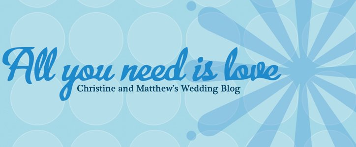 Christine and Matthew's Weddin' Blog