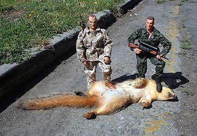 http://3.bp.blogspot.com/_hXjhQ1_xjuQ/Rx50EJdydKI/AAAAAAAAB3U/SACt0bdkm_Y/s400/Squirrel+safari.jpg
