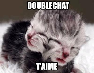 Doublechat