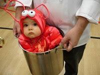 Bébé homard
