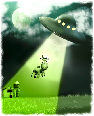 Abduction de vache
